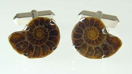 Ammonite cufflinks in silver - Small ammonite sliced in two and made into cufflinks in silver